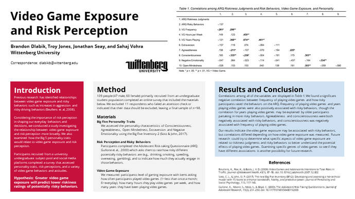Video Game Exposure and Risk Perception