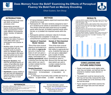 Does Memory Favor the Bold? Examining the Effects of Perceptual Fluency Via Bold Font on Memory Encoding