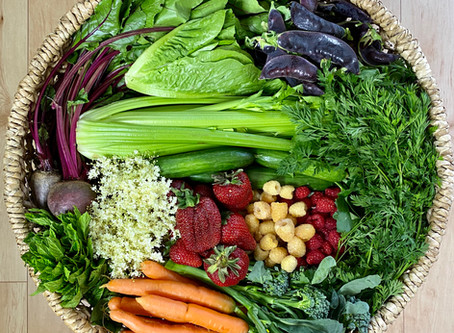 Food Justice: Gratitude for the Farmers Market Fund