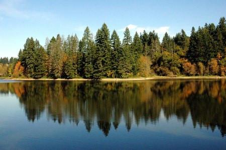 Today's Primal Activity: Hiking Lacamas Park