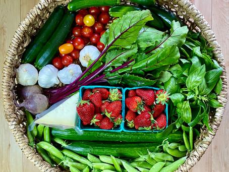 Wellness Wednesday: Opening Day at Shemanski Park Farmers Market