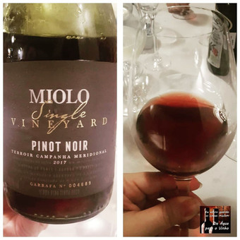MIOLO SINGLE VINEYARD PINOT NOIR 2017 (Brasil)