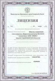 Лицензия 001.jpg