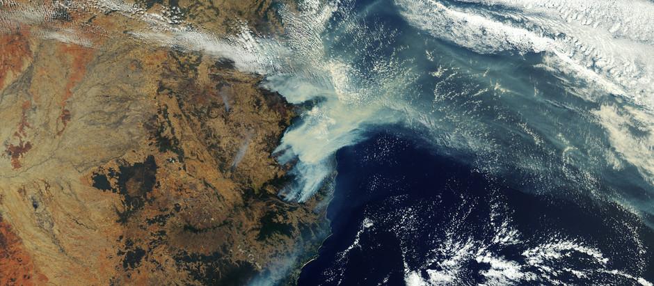 Australian Bushfires: 3 Ways to Help Right Now