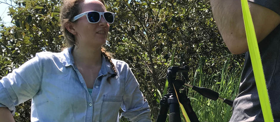 Leader for Nature: How Chiara Klein Helped Protect a Precious Primate