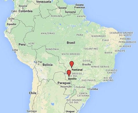 MapBrazil -Bonito -Pantanal.jpg