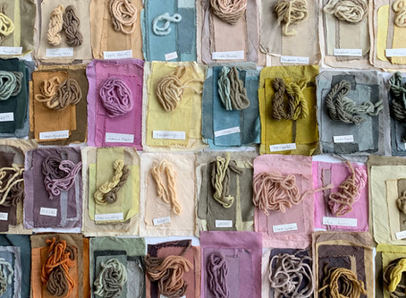Local Color | Natural Dyes of Detroit