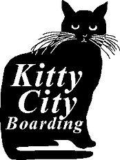 Feline Boarding Austin TX Kitty City