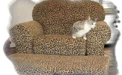 Kitty City Austin TX Highmark Kennel
