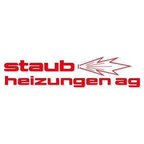Staub-Heizunge.jpg