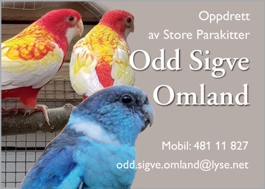 Odd Sigve Omland