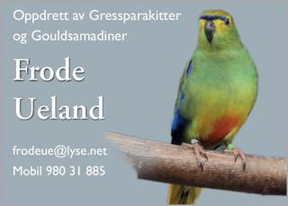 Frode Ueland