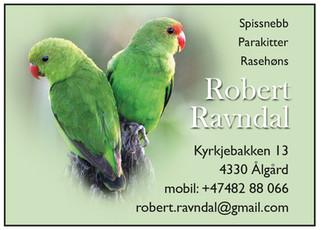 Robert Ravndal.jpg