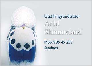Arild Skimmeland.jpg