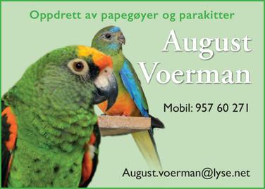 August Voerman