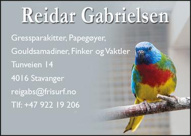 Reidar Gabrielsen.jpg