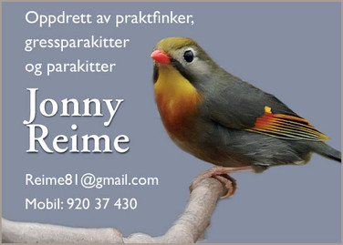Jonny Reime