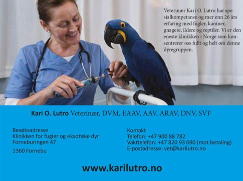 Kari Lutro