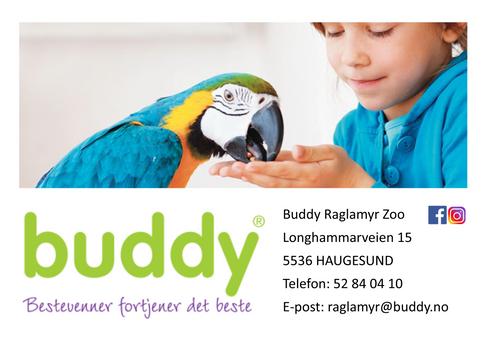 Buddy Raglamyr