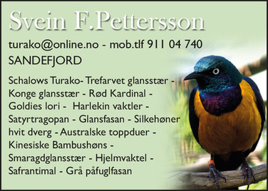 Svein Folke Pettersson.jpg