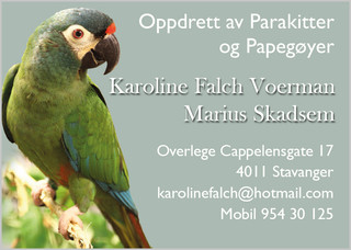 Karoline& Marius.jpg
