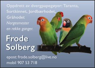 Frode Solberg