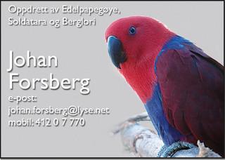 Johan Forsberg.jpg