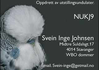 Svein Inge Johnsen.jpg