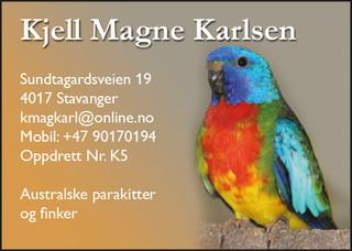 Kjell Karlsen.jpg