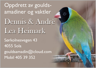 Dennis & Andre.jpg