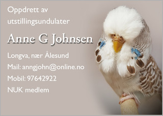 Anne Grete johnsen.jpg