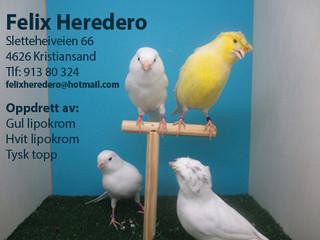 Felix Heredero.jpg