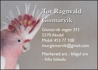 Tor Gismarvik.jpg