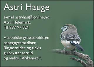 Astri Hauge.jpg