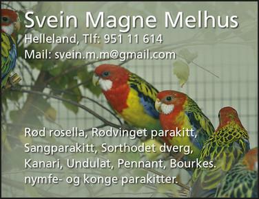 Svein Magne Melhus .jpg