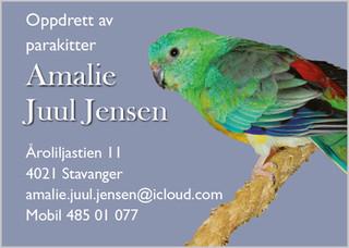 Amalie.jpg