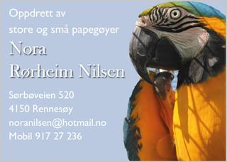 Nora R. Nilsen.jpg