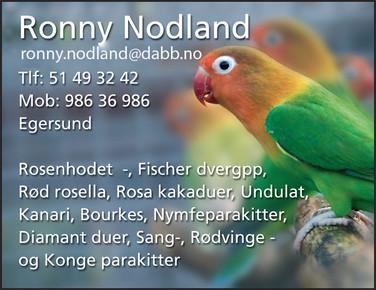 Ronny Nodland.jpg