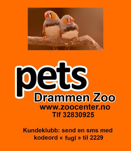 Pets Drammen Zoo fugleannonse2021.jpg