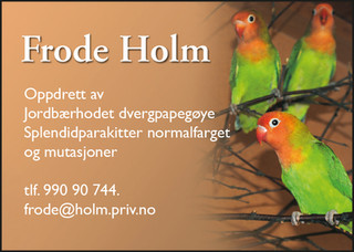 frode Holm.jpg