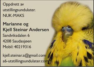 Kjell Steinar Andersen.jpg