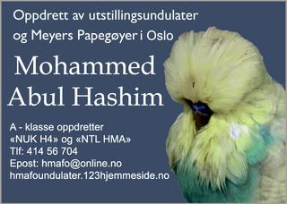 Mohammed Abul Hashim