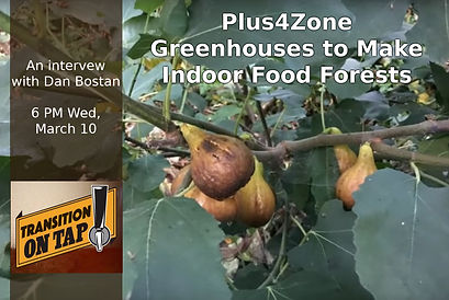Transition on Tap: Creating Community Food Forests with Plus4Zone, Energy-Independent Greenhouses