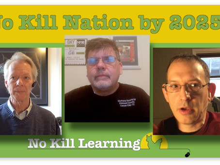 Watch: A No Kill Nation by 2025?