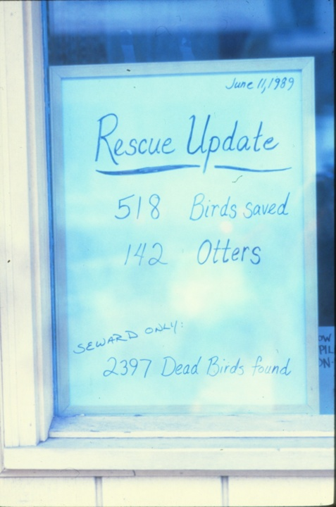 A sign indicating the numbers of animals taken in to-date.