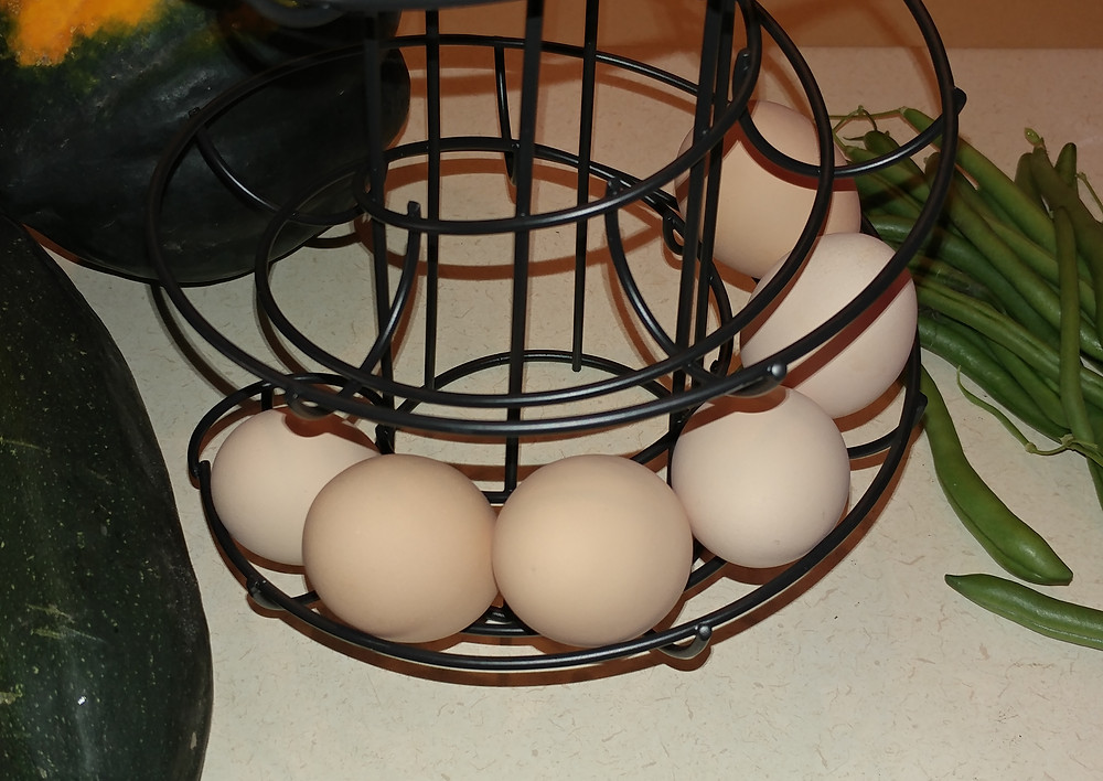 Egg skelter on the counter