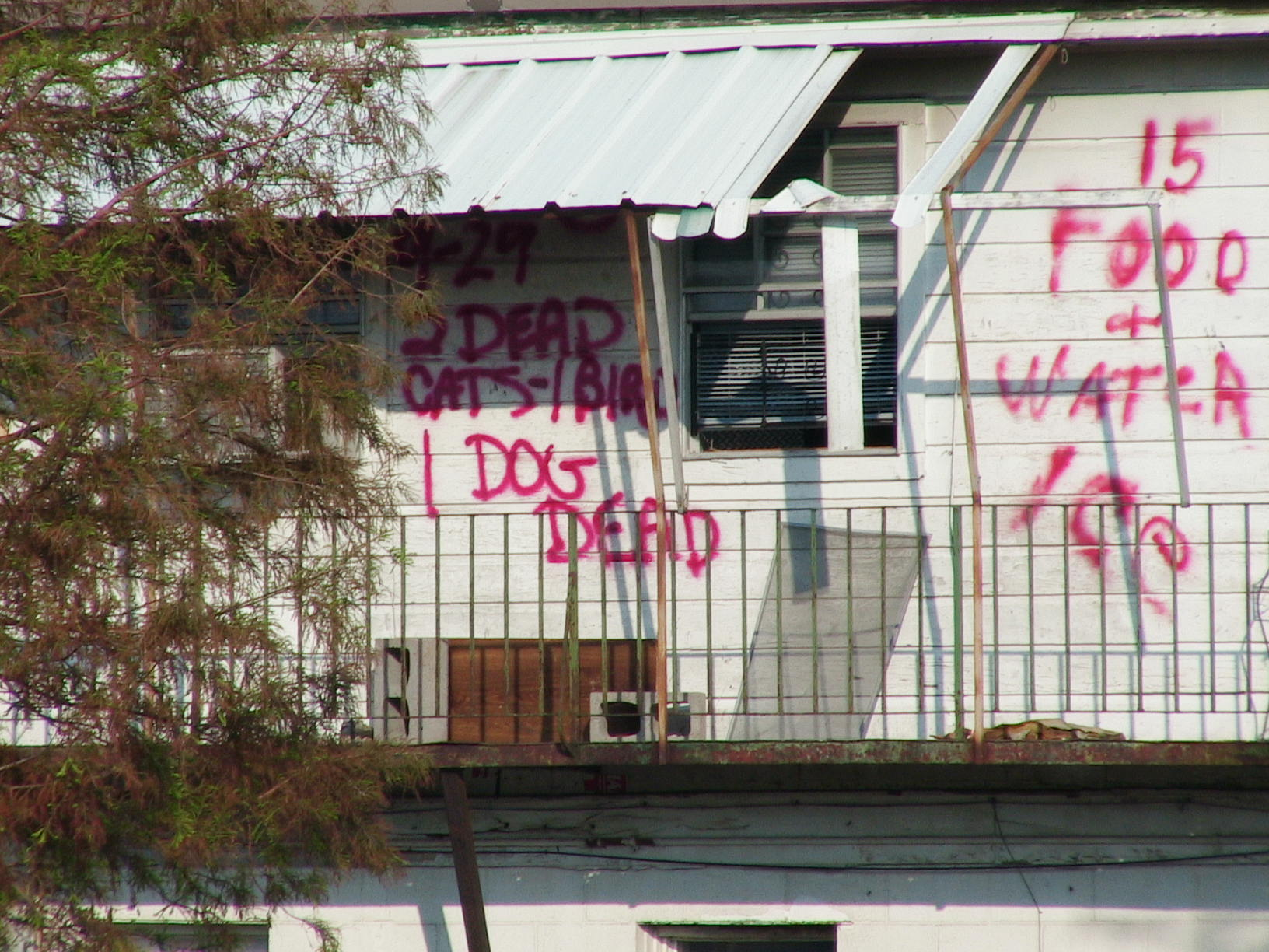 Residents and rescuers communicated with each other by spray painting messages on buildings.