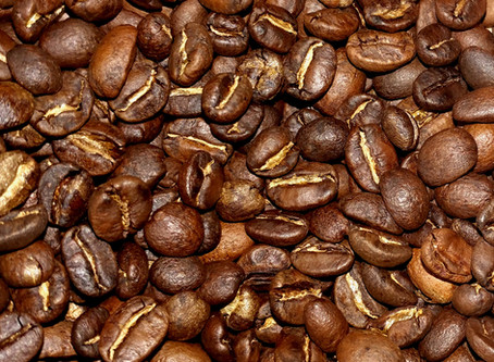 A Coffee Snob's Survival Plan for Climate Change
