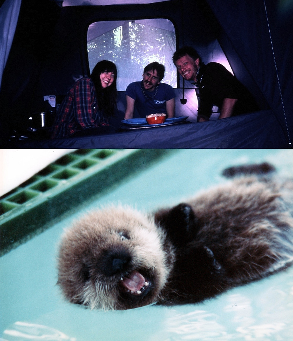 Us in our meal tent and a baby otter