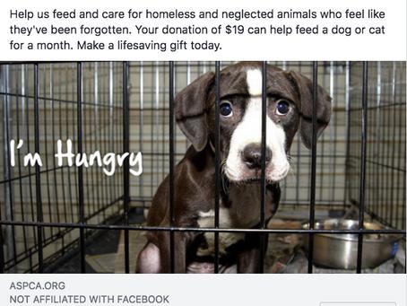 Stockpiling Cash While Animals Go Hungry?
